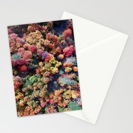 FOREST - AUTUMN - COLORS - PHOTOGRAPHY - NATURE Stationery Cards
