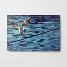 Freedom means taking off safe ports - Fine Art Nature Photography Metal Print