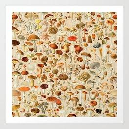 Vintage Mushroom Designs Collection Kunstdrucke