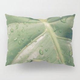 Philomena Philodendron Pillow Sham