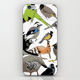 color birds iPhone Skin