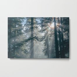 Cascade Morning Metal Print
