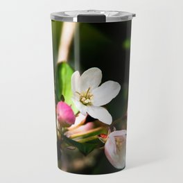 Crab apple flowers Travel Mug