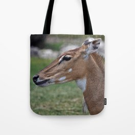 Persian Gazelle Tote Bag