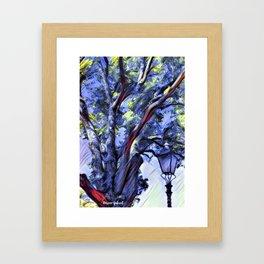 Tree and Light Framed Art Print