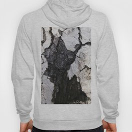 bark abstact no1 Hoody