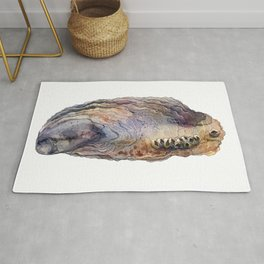 Shell watercolor illustration 3 Rug