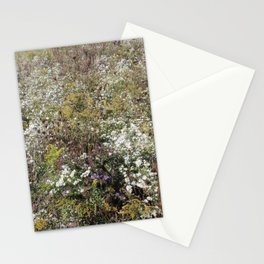 Foreign Fields Stationery Cards