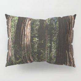 Sunlit California Redwood Forests Pillow Sham