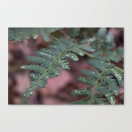 Detailed Leaves Canvas Print
