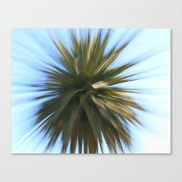Fireworks Palm Canvas Print