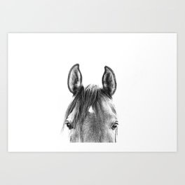 peekaboo horse, bw horse print, horse photo, equestrian print, equestrian photo, equestrian decor Art Print