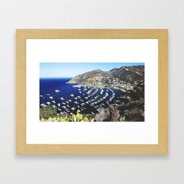 Catalina Island Framed Art Print