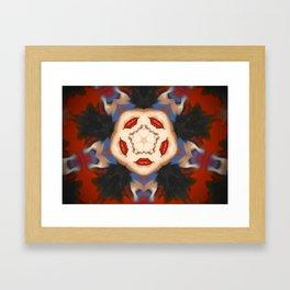 Kaleidoscope C7 Framed Art Print