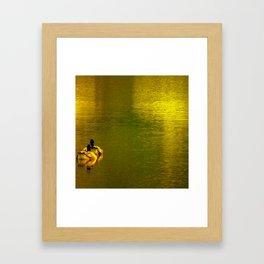Goldwater II Framed Art Print