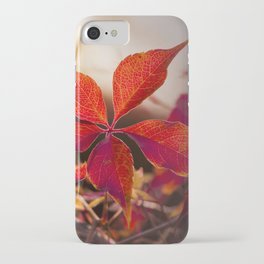 Indian Summer I iPhone Case