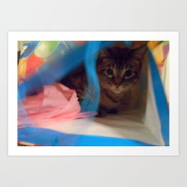 Birthday Cat Art Print