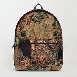 Amazing Spider Rock Backpack