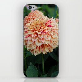 A Little Peace of Mind iPhone Skin
