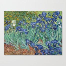 Irises, Vincent Van Gogh Canvas Print