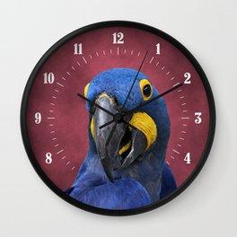 Cheeky Blue Hyacinth Macaw Wall Clock