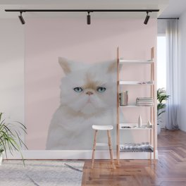 Cute Angry Fluffy Pink White Kitty Cat Portrait Wall Mural