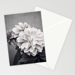 Black and White Dahlia Flower Photography, Grey Floral, Gray Neutral Nature Petals Stationery Cards