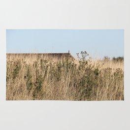 Fields Rug