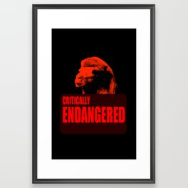 Endangered Wild Bactrian Camel Framed Art Print