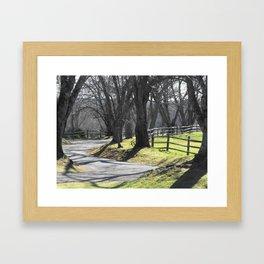 Winding Way Framed Art Print