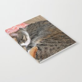 Nap Buddies Notebook