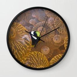 Clownfish in Anemone Wall Clock