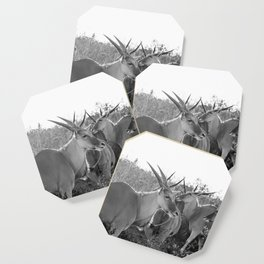 Herd of Eland stand in tall grass in African savanna Coaster