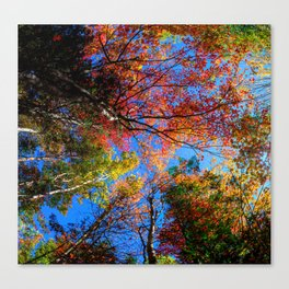 Colorful, Autumn In New Hampshire Canvas Print