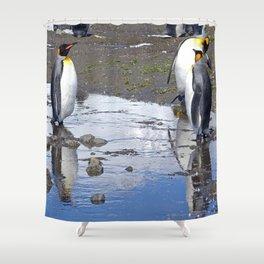 King Penguin Reflection Shower Curtain