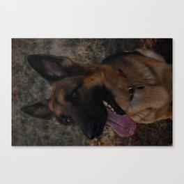 German Shepherd Love Canvas Print
