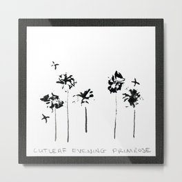 011/100: CUTLEAF EVENING PRIMROSE [100 Day Project 2020] Metal Print