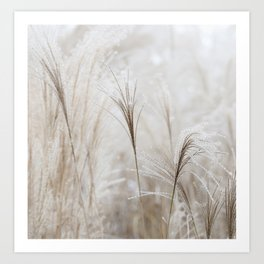 Light Neutral Soft Ornamental Grasses Art Print