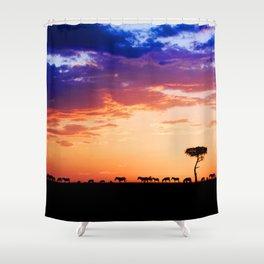 Zebras at Sunset, Masai Mara Shower Curtain