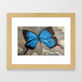 Ulysses Blue Butterfly Framed Art Print