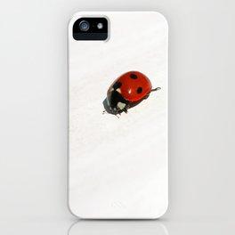 ladybug II iPhone Case