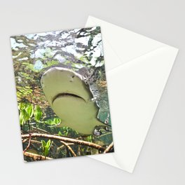 When Life Gives You Lemons Stationery Cards