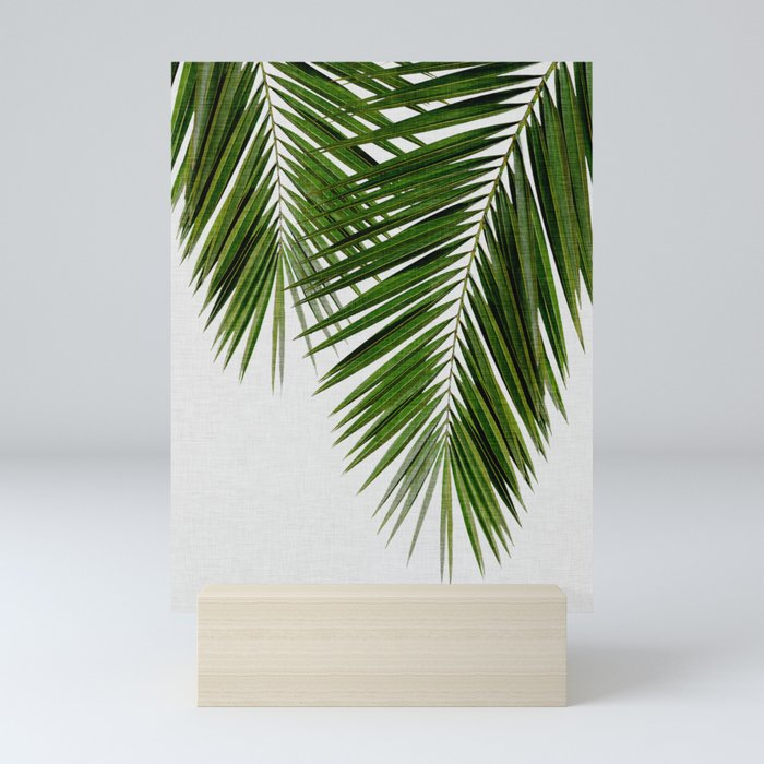 Palm Leaf II Mini Art Print