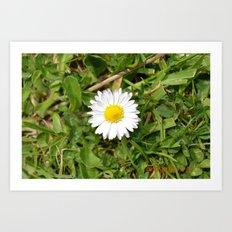 Spot Flower Art Print