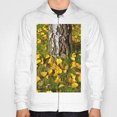 Beech Tree in Autumn  Hoody