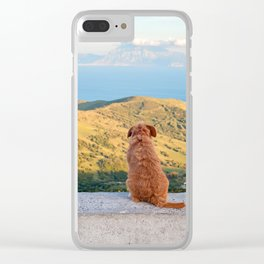 Lonely dog watching on Gibraltar Clear iPhone Case