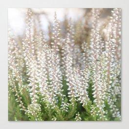 Whitegreen Canvas Print