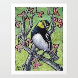 Golden Cheeked Warbler Art Print
