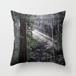 Muir Woods Crepuscular Rays Throw Pillow