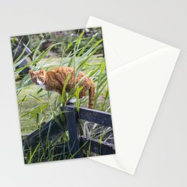 Cat on perch Stationery Cards